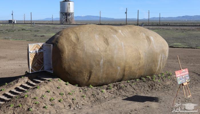 سیب زمینی بزرگی که تبدیل به خانه شد!