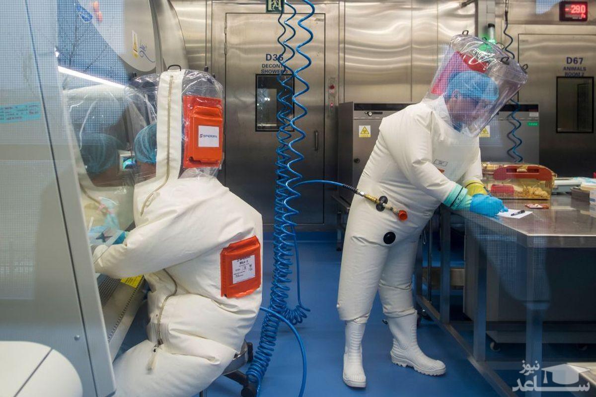 چین: نشت کرونا از آزمایشگاه ووهان دروغ آمریکا است