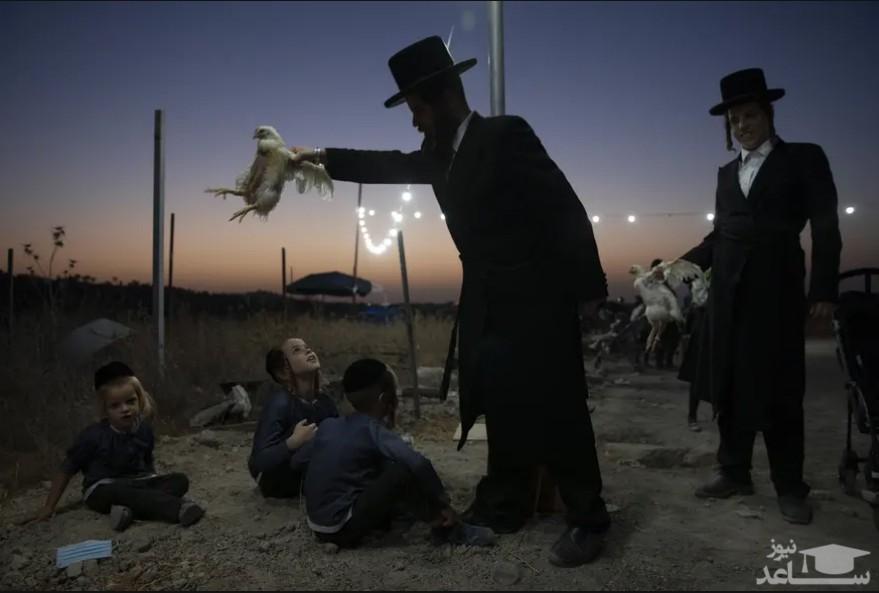 """مرد یهودی ارتدوکس با اجرای مراسم آیینی مراسم """"کاپاروت"""" ، مرغی را روی فرزندان خود می چرخاند. یهودیان معتقدند این آیین گناهان یک سال گذشته را به مرغ منتقل می کند و قبل از روز کفاره انجام می شود./ شهر """"بیت شمش"""" اسراییل/ آسوشیتدپرس"""