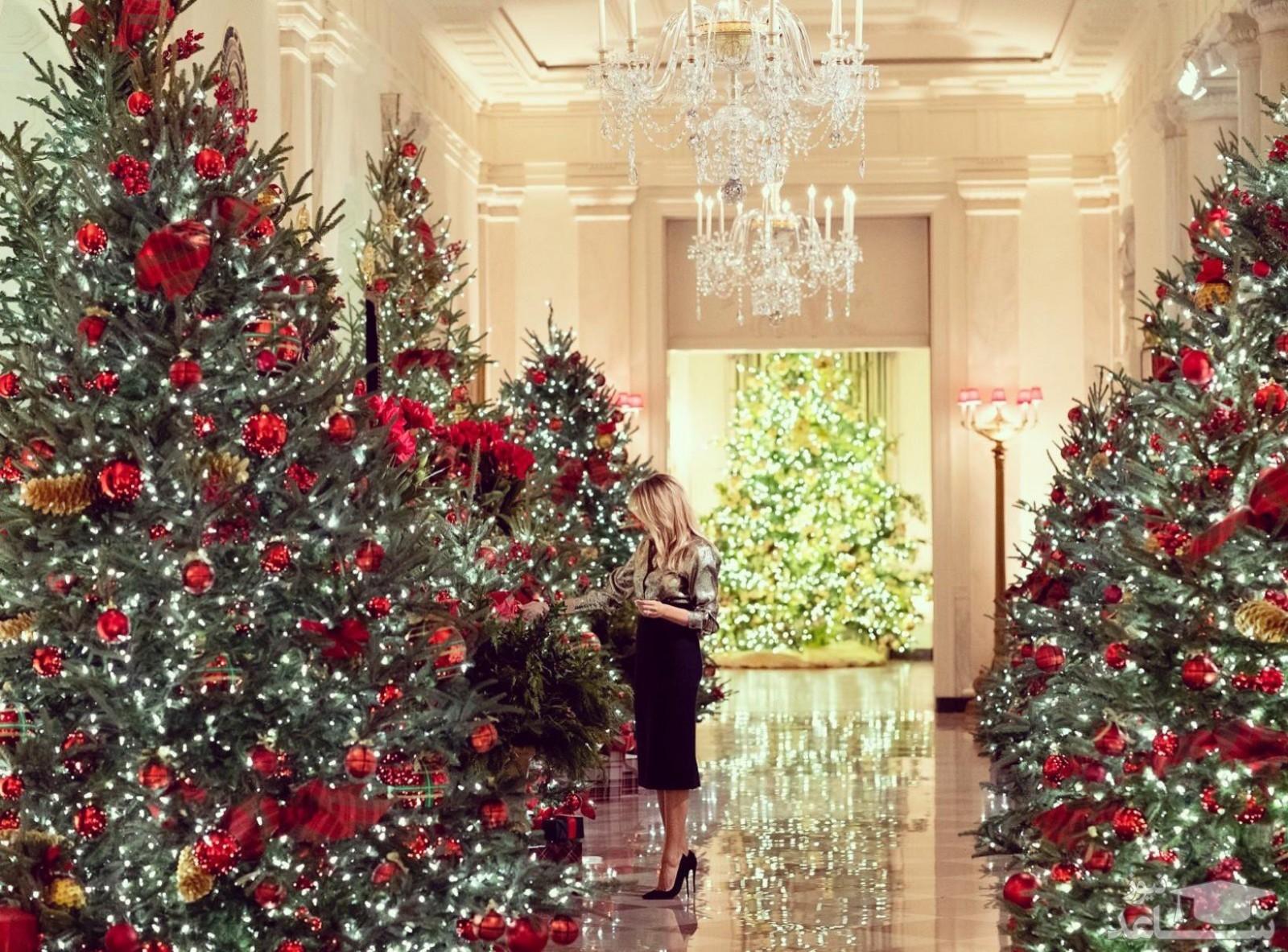 (تصاویر) رونمایی ملانیا ترامپ از آخرین دکوراسیون کریسمسش در کاخ سفید