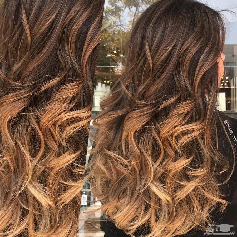 مردان زنان مو طلایی را می پسندند یا با مو قهوه ای؟
