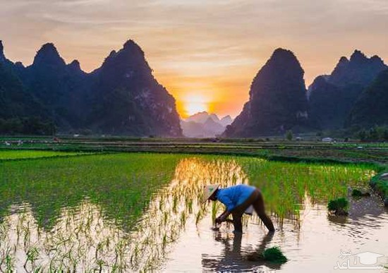 ۸ اختراع چین باستان که دنیا را تغییر داد