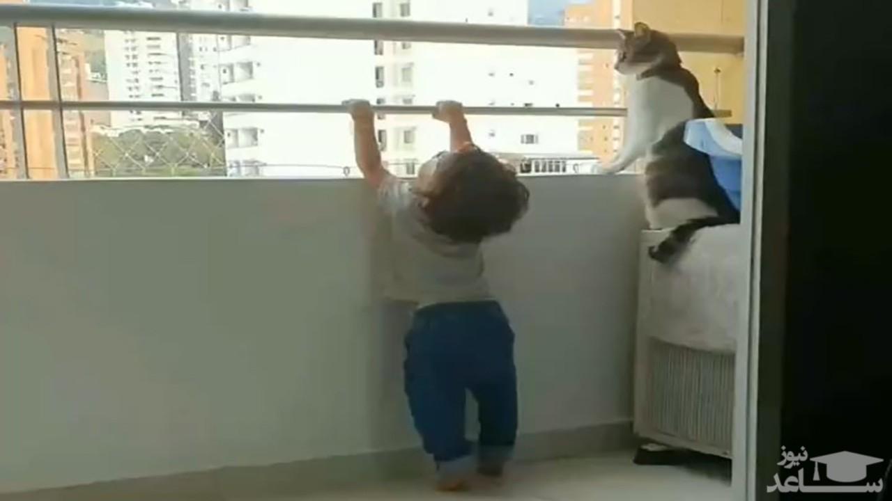 (فیلم) مواظبت یک گربه باهوش از کودک خردسال