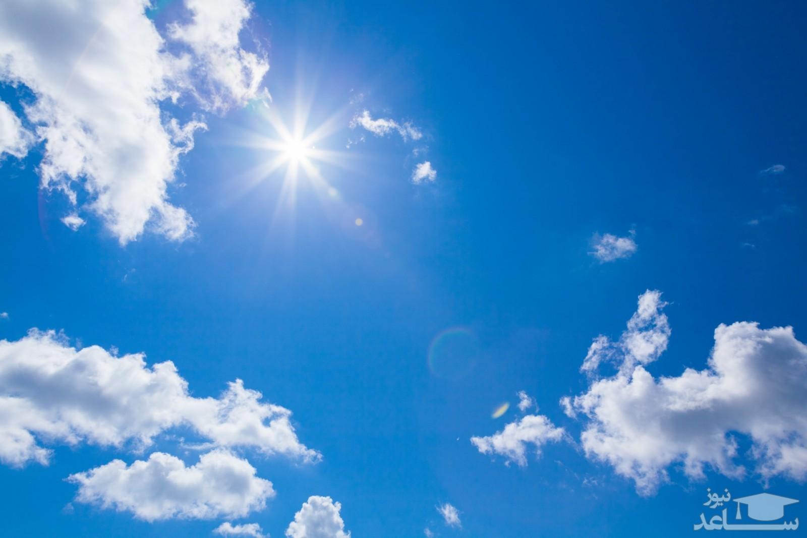حرکات زیبای کلونی سارها در آسمان
