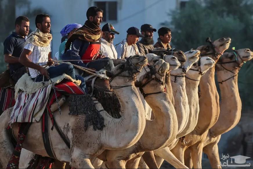 مسابقه شترسواری در غزه