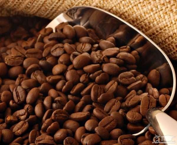 گیاه قهوه (نگهداری + پرورش)
