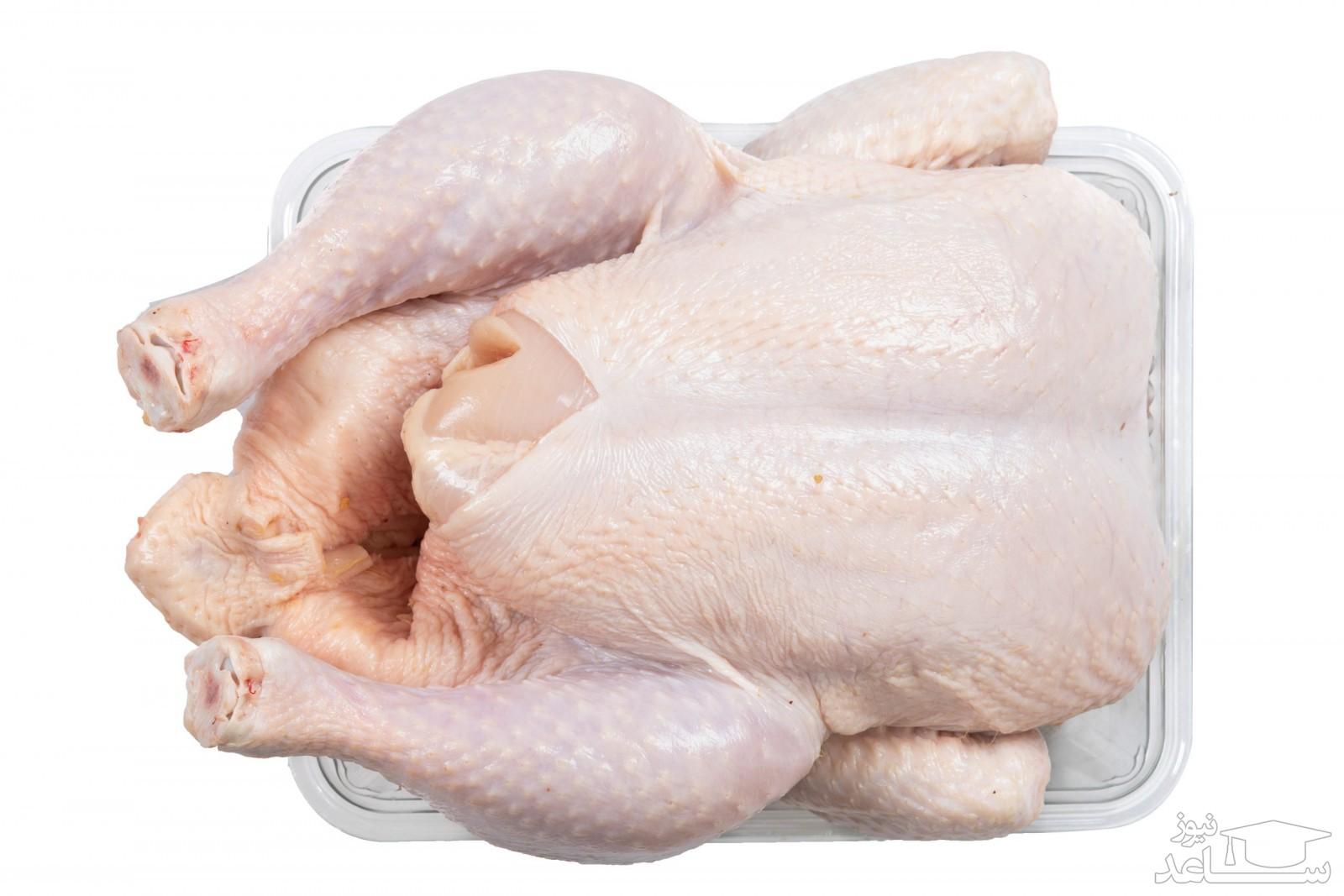 قیمت هر کیلو مرغ در بازار امروز چقدر است؟