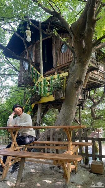 خانه درختی شبنم فرشادجو
