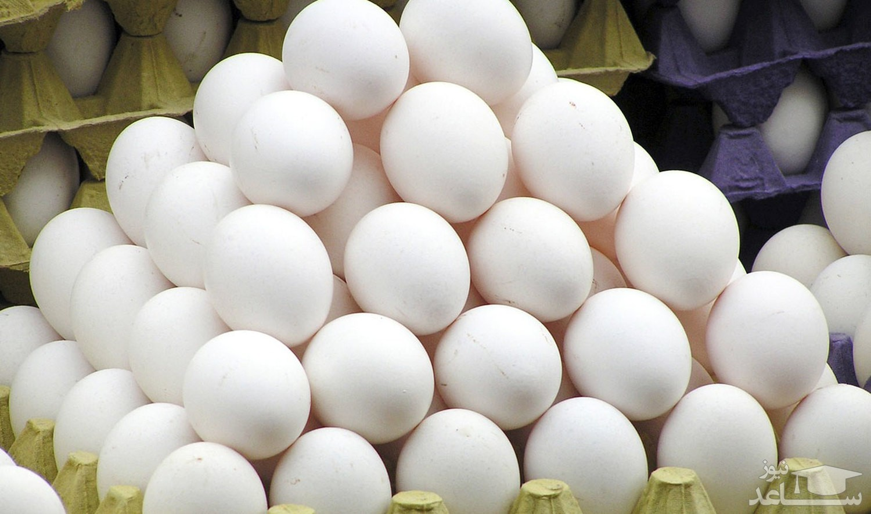 کاریکاتور/ ببينيد قیمت تخممرغ در بازار چه كرده!