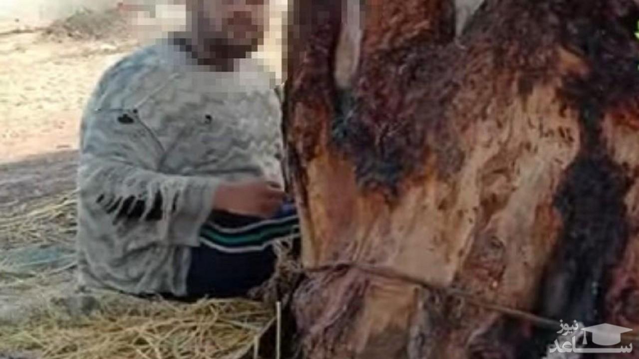مادری فرزندش را مدت ۱۵ سال به یک درخت بست!