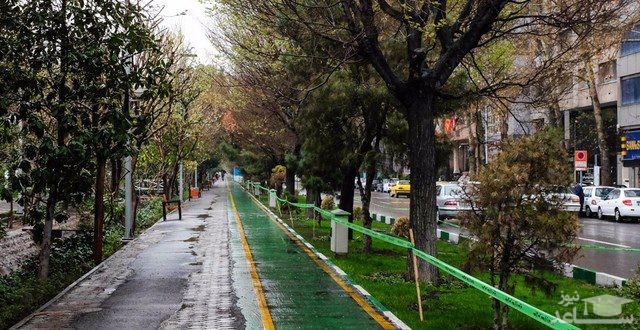 (عکس) چرای گوسفندان در بلواز کشاورز تهران!