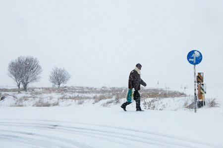 اطلاعیه سازمان هواشناسی دربارهی کولاک برف 