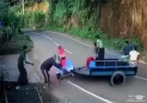(فیلم) عجیب ترین و خندهدار ترین حادثه رانندگی
