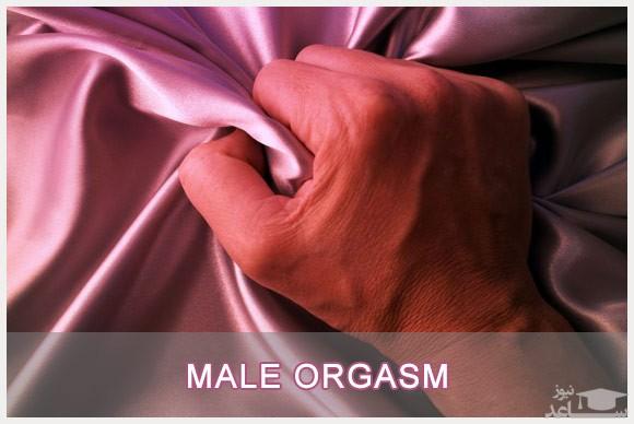 مراحل تحریک شدن و فعالیت جنسی در مردان