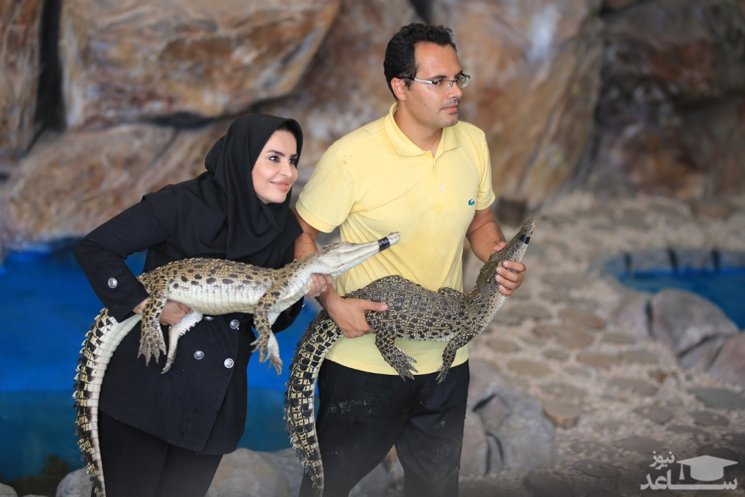گفتگوی اختصاصی ساعد نیوز با زوج خبرساز مشهدی بنیانگذار اولین پارک کروکودیل در ایران