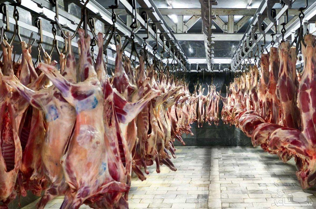 کاهش قیمت گوشت در میادین میوه و ترهبار