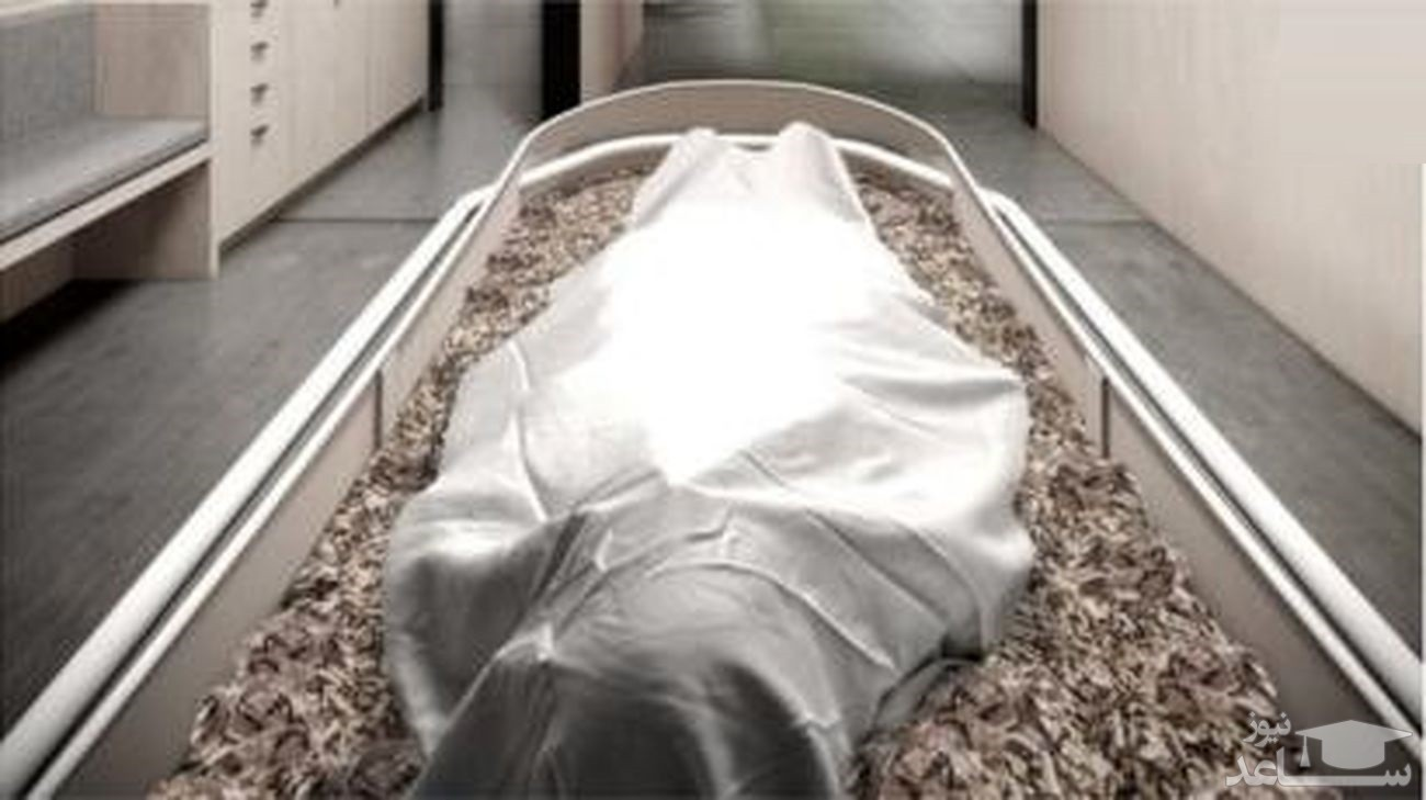 مرگ تلخ دختر 10 ساله تهرانی با نیش یک حشره / پزشکان قانونی فاش کردند
