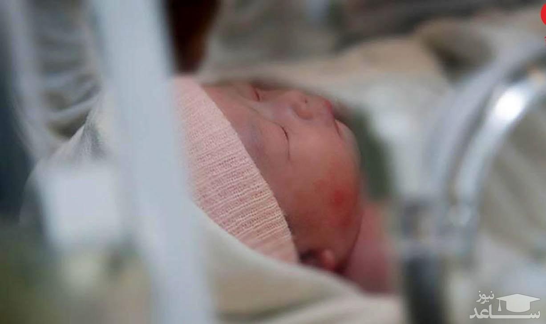 از لقاح تا به دنیا آمدن یک نوزاد ۲۷سال طول کشید