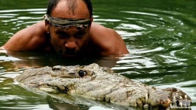تمساح دوستی یک مرد