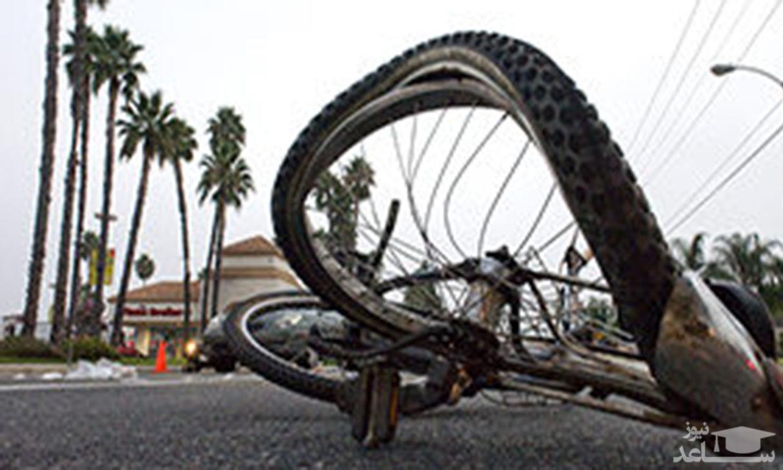 (فیلم)لحظه عجیب و غریب شاخبهشاخ شدن دو دوچرخه