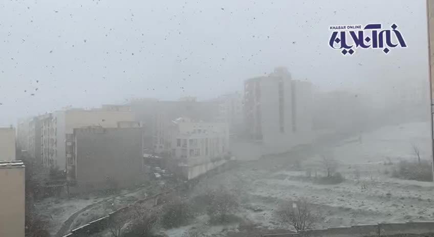 (فیلم) بارش برف بهاری اینگونه تهرانیها را غافلگیر کرد