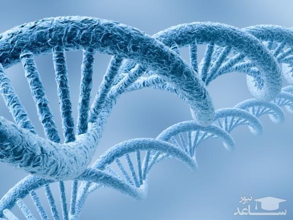 آشنایی با مجموعه زیست شناسی سلولی و مولکولی و بازار کار آن