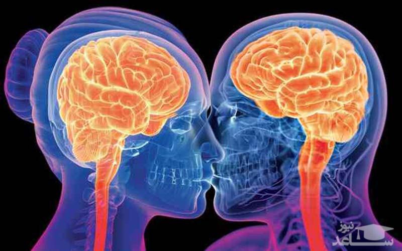 تحریک جنسی و رابطه جنسی چه اثری بر مغز و متابولیسم بدن دارد؟