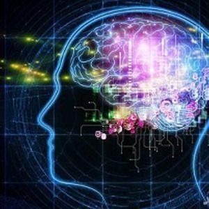 تاثیر مخربی که اینترنت روی مغز انسان میگذارد!