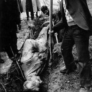 (عکس) دفن مجسمه محمدرضا شاه توسط انقلابیون