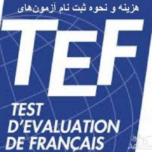 هزینه و نحوه ثبت نام آزمون زبان فرانسه TEF