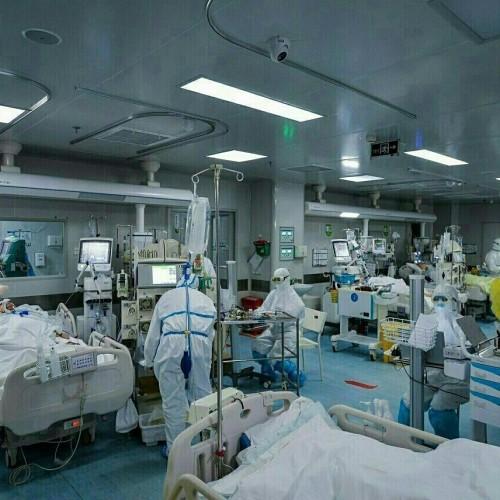 آخرین اخبار از شناسایی بیماران و فوتی های کرونا در شبانه روز گذشته