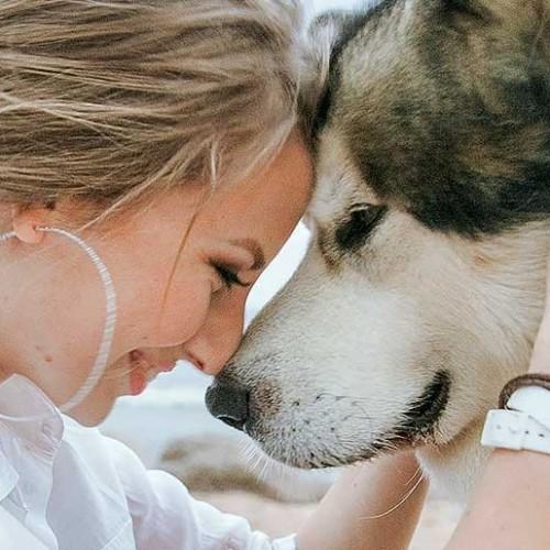 آموزش و تربیت سگ با اصول روانشناسی