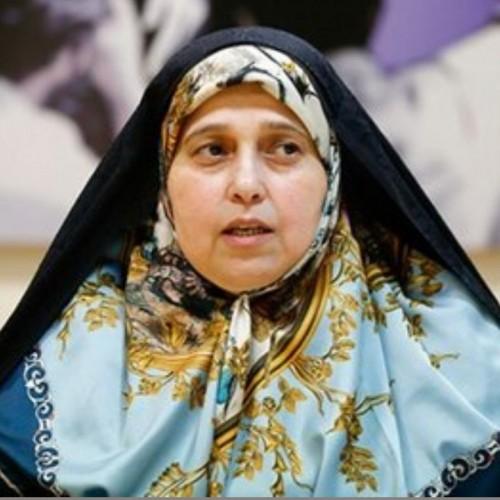 انتقاد تند و کوبنده سلحشوری از تصویب طرح صیانت مجلس