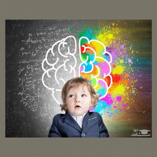آشنایی با مراحل رشد مغز کودک