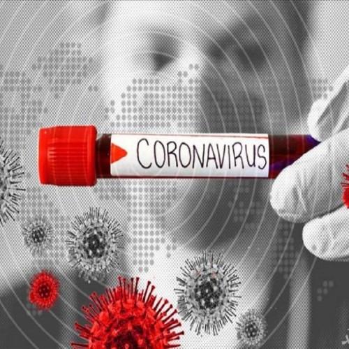 بهبودیافتگان کرونا تا شش ماه به کووید ۱۹ مبتلا نمیشوند