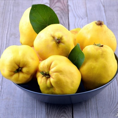 دیدن میوه به در خواب چه تعبیری دارد؟ / تعبیر خواب به