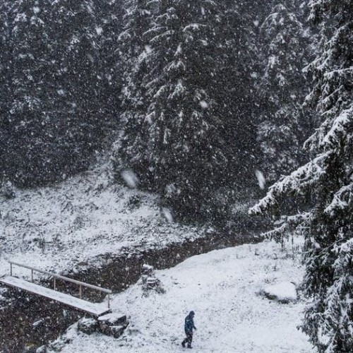 (عکس) بارش برف غافلگیرکننده در سوئیس