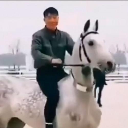 (فیلم) حرکت بی نظیر یک سوارکار برای سوار شدن بر اسب