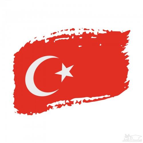(فیلم) واکنش ترکیه به حملات بی رحمانه رژیم صهیونیستی علیه مردم فلسطین