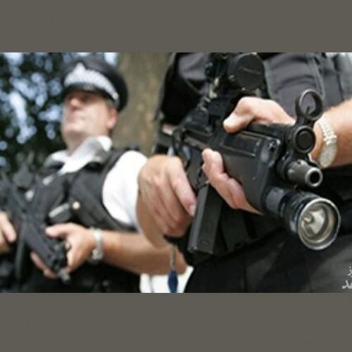 (فیلم) وقتی یک گربه، رئیس پلیس میشود!