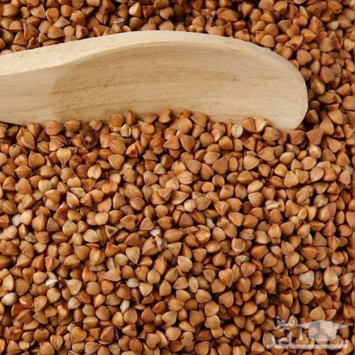 گندم سیاه با خواص دارویی شگفت انگیز برای سلامت بدن