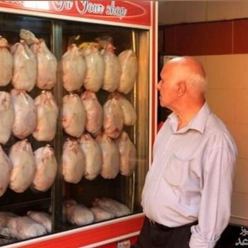 هشدار عجیب از آینده قیمت مرغ و گوشت