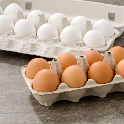 هشدار به کسانی که تخم مرغ هایشان را دریخچال نگهداری می کنند