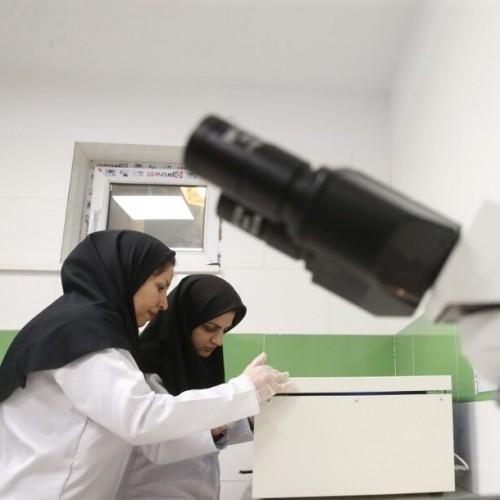 جزئیات پذیرش دانشجوی دکتری پژوهشی در ۵۷ رشته علوم پزشکی