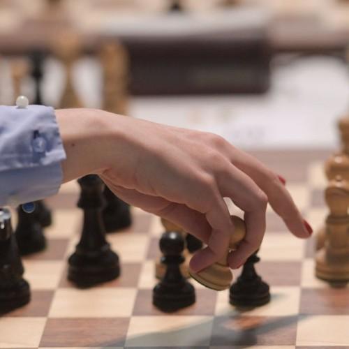 کارتون کنایهآمیز به باخت «برقیِ» شطرنجبازان