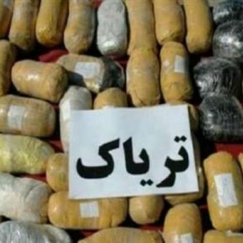 کشف ۱۷۲ کیلوگرم تریاک در عملیات مشترک پلیسی بوشهر و هرمزگان