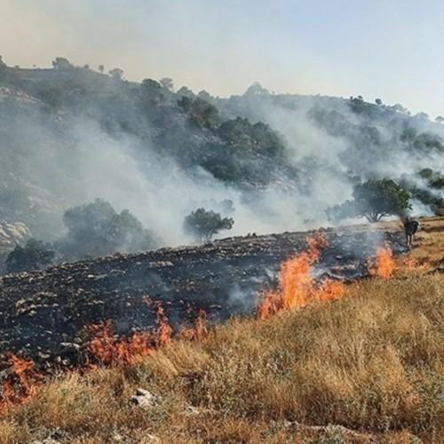 مهار آتش سوزی جنگلهای خاییز پس از ۵ روز