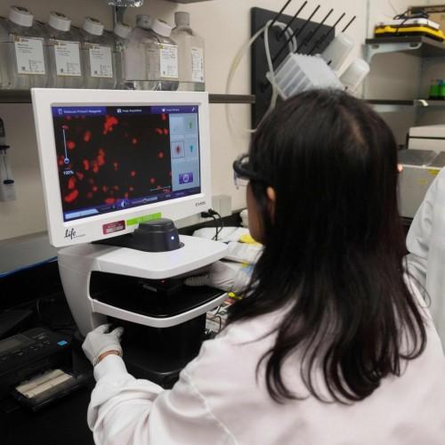 نتایج مثبت یک واکسن دیگر کرونا روی انسان