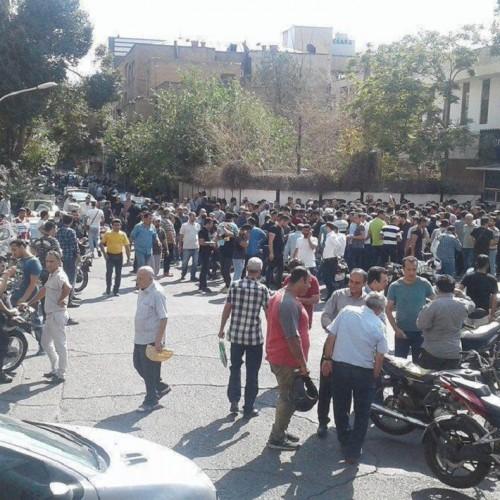 پخش دلار در خیابانهای شیراز!