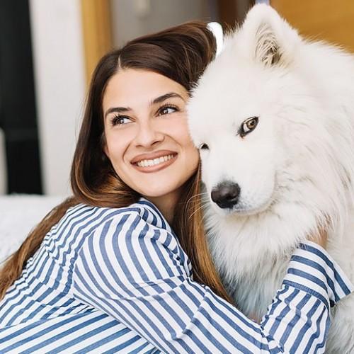 رفتار شناسی و زبان بدن سگ ها